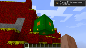 Kotek-Green