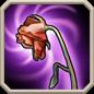 Cara-ability3