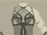 Revealing Women's Clothing
