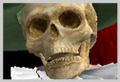 Revenant SClll icono