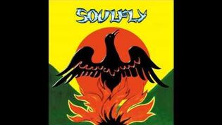 Soulfly Terrorist