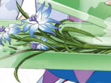 Eight Petal Immortal Orchid