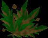Grimy dwarf weed detail