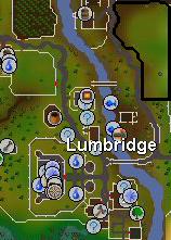 Lumbridge cattle field