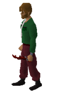 Dragon defender equipped
