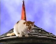 Barney's Adventure Bus Sound Ideas, CAT - DOMESTIC SINGLE MEOW, ANIMAL 02