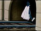The Flying Cat TOM SCREAM-3