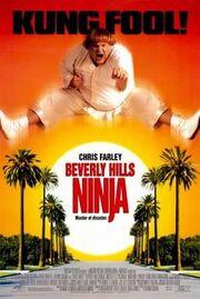 Beverly Hills Ninja poster