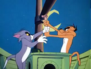 Tom and Jerry Cat and Dupli-cat MGM, GULP, CARTOON - JERRY GULP-5