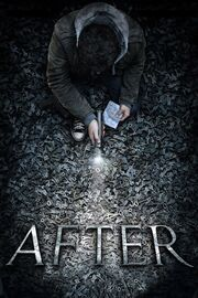 After 2012 Movie Poster