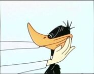 Daffyresinstretch03