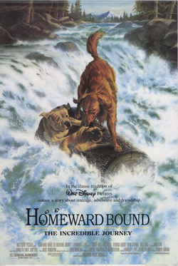 Homeward bound the incredible journey poster