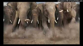 Denatoons Elephant Stampede Sound Effects