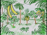 Sound Ideas, JUNGLE, DAY - CENTRAL AMERICA: AFTERNOON AMBIENCE, HEAVY INSECTS, BIRDS, FOREIGN
