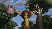 Madagascar-disneyscreencaps com-8956