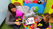 Sandaroo Kids Series Sound Ideas, HORSE - INTERIOR WHINNY, ANIMAL 02 3
