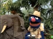 Sesame Street Grover and the Elephant Hollywoodedge, Parrot Squawks Inter TE013301-1