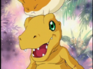Digimon Adventure 01 Ep 3 Hollywoodedge, Dry Squeaky Kiss OrS CRT027702