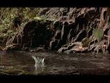 Dinosaur (2000) (Trailers)