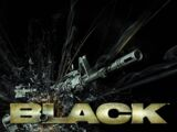 Black (2006) (Video Game)