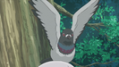 Magical Sempai Ep. 3 Sound Ideas, BIRD, PIGEON - FLAPPING WINGS, CLOSE UP, ANIMAL (4)