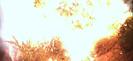 Vlcsnap-2017-07-21-23h24m48s843