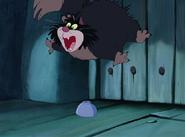 Cinderella ANIMAL, CAT - TOM CATS, FIGHTING, HISSING, GROWLING 1