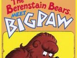 The Berenstain Bears Meet Bigpaw (1980)