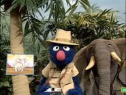 Sesame Street Grover and the Elephant Hollywoodedge, Parrot Squawks Inter TE013301-2