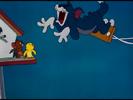 The Flying Cat TOM SCREAM-1