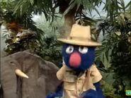 Sesame Street Grover and the Elephant Sound Ideas, BIRD, PARROT - LARGE SINGLE CALL, ANIMAL (2)