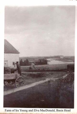 File:Farm of Ira Young and Elva MacDonald Basin Head.jpg