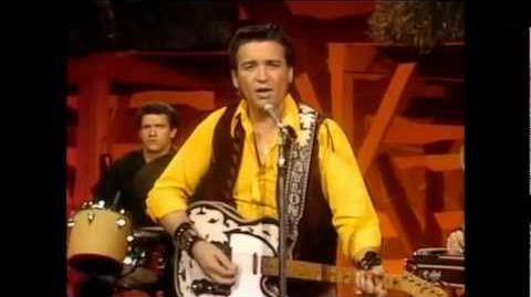 Waylon Jennings - Me And Bobby McGee