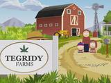 On a Colorado Farm