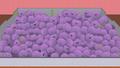 Memberberries 4