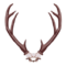Tex itemicon deer antlers