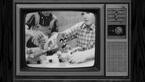 South.Park.S19E09.Truth.and.Advertising.PROPER.1080p.BluRay.x264-YELLOWBiRD.mkv 000214.798