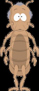 Non-human-head-lice-vice-president-greg