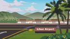 利胡埃机场
