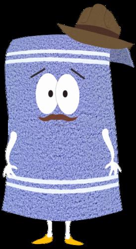 斯蒂文·麦克毛巾