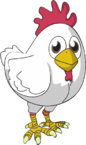 Chicken-kyle