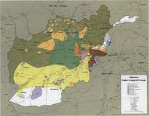 Afghanistan insurgency 1985