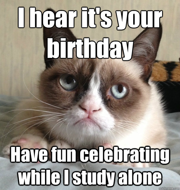 Image Fine Cat Lady Birthday Meme Along Affordable Birthdayg