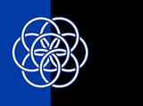 Intergalactic Federation