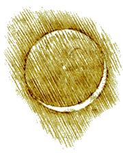 Leonardo-Earthshine