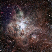 593px-Tarantula Nebula TRAPPIST