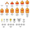 Marine corp ranks.jpg