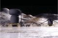 Callisto base.PNG