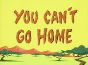 Space Goofs - You Can't Go Home - Title Card.jpg