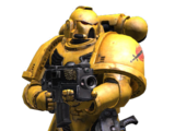 Tactical (Space Marine)